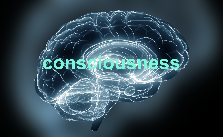 How do we measure consciousness?